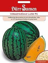 Dürr-Samen 4368 Gelbfleischige Wassermelone Luteo F1 (Wassermelonensamen)