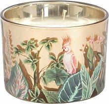 Duftkerze im Glasbehälter mit Dschungelmotiv,