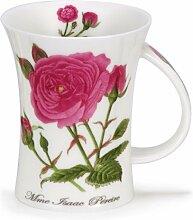 DUNOON Rosa Botanica Mme Isaac Pereire – Dunoon Becher Richmond