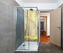 Duschrückwand Waldweg Deko Design M0024 | 90 x 200cm (B x H) | Plexiglas 3mm
