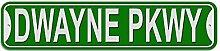 Dwayne Schild–Kunststoff Wand Tür Street Road Stecker Name, plastik, grün, Parkway