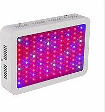 DZW 300W LED wachsen Licht voller Spektrum wachsen Lampe für Indoor Pflanzen Veg und Blume (100 Leds) High quality