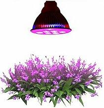 DZW LED-Anlage leuchtet 12W / 24W Pflanzenwachstum Licht rotes Licht blaues Licht füllen Licht Indoor Pflanzen wachsen Veg und Blume , 12w High quality