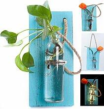 eanjia Farbe massiv Holz Wand Dekoration Aufhängen Pflanzgefäßen (Antik Finish) hängen Wand Vasen Hydrokultur Pflanzen aufhängen Glaswaren für Home Garten living room Decor (keine Blumen) Himmelblau