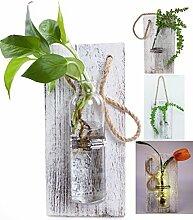 eanjia Farbe massiv Holz Wand Dekoration Aufhängen Pflanzgefäßen (Antik Finish) hängen Wand Vasen Hydrokultur Pflanzen aufhängen Glaswaren für Home Garten living room Decor (keine Blumen) weiß