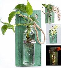 eanjia Farbe massiv Holz Wand Dekoration Aufhängen Pflanzgefäßen (Antik Finish) hängen Wand Vasen Hydrokultur Pflanzen aufhängen Glaswaren für Home Garten living room Decor (keine Blumen) grün