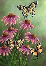 ECHINACEA Schmetterling SPRING GARDEN Flagge