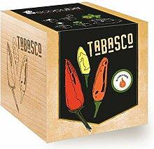 Ecocube Chili Tabasco, Schärfegrad: 7 (Scoville: