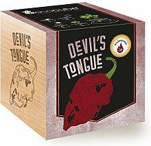 Ecocube Devil's Tongue (Schärfegrad: 10,