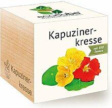 Ecocube Kapuzinerkresse, Bio Zertifiziert,