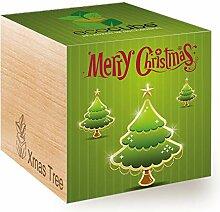 Ecocube Merry Christmas/2G, Weihnachtsbaum,