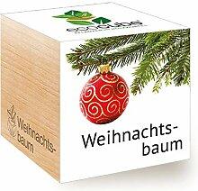 Ecocube Weihnachtsbaum,  Nachhaltige Geschenkidee