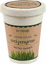 Ecocup, Weizengras, Bio Zertifiziert, Nachhaltige
