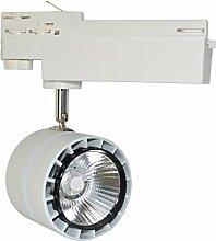 EcoLife Lighting LED Schienenstrahler 20W,