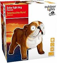 edco 8711252926824Ass PR Solar Hund