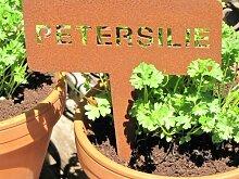 Edelrost Beetstecker Petersilie