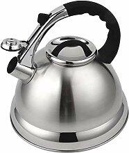 Edelstahl-Teekanne für ALLE Kochfelder, schnell