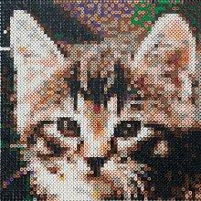 efco Fotoperlen Nach Zahlen Katze mit Accessoires,