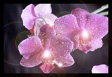 Eglo 75036 - LED leuchtendes dekorativ Bild