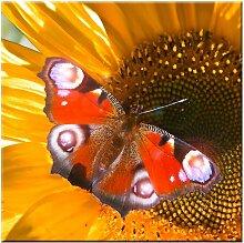 Eglo 75037 - LED leuchtendes dekorativ Bild