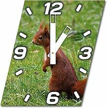 Eichhörnchen, Design Wanduhr aus Alu Dibond zum Aufhängen, 30 cm Durchmesser, breite Zeiger, schöne und moderne Wand Dekoration, mit qualitativem Quartz Uhrwerk