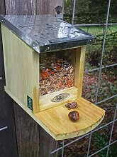 Eichhörnchen Futterhaus, futterautomat,