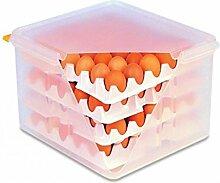 Eier-Box GN 2/3