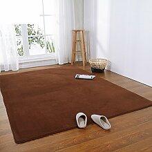 Einfachen einfarbigen moderne Wolldecken/ Korallen gepolstert Samtteppich/Wohnzimmer Schlafzimmer Bett Teppich-C 80x160cm(31x63inch)