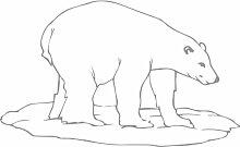 Eisbär, Größe 60 cm Breite, 36 cm Höhe, Farbe Grau Eisbär Aufkleber, Geschenke, Fenster, Wand Aufkleber, Weihnachten, ThatVinylPlace