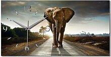 Elefant Afrika Designer Funk Wanduhr Funkuhr modernes Design * Made in Germany* WA085F
