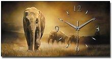 Elefant Designer Funk Wanduhr Funkuhr modernes Design * Made in Germany* WA129F
