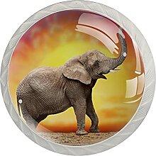 Elefant Küchenknopf Klarglasschrank Zugschraube