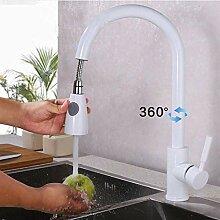 Elegant Ausziehbar Küchenarmatur 360°Schwenkbar