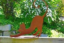 Elegantes Kätzchen Katze Rostkatze Rost Edelrost