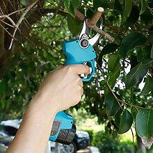 Elektrische Gartenschere, Elektrische Astschere