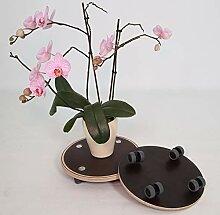 Elephant Cases Rolluntersetzer • Pflanzenroller