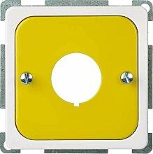 Elso Zentralplatte für Not-Ausschalter mit 2,