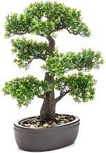 Emerald Künstliches Mini-Bonsai Ficus in Brauner