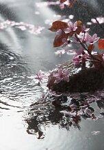 Emotion Flächenvorhang Blütenregen 260x180 3er