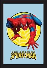 empireposter - Spiderman - Kriechen - Größe