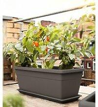 EMSA® 'My City Garden' Pflanztrog granit