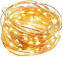 EnGive Lichterkette Warmweiß Kupferdraht Weihnachtsdeko 100er LED 10M Lichterketten Garten Weihnachtsbeleuchtung
