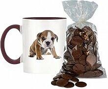 Englisch Bulldogge Welpe Bild Design zweifarbige