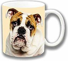 Englische Bulldogge Junge Erwachsene Close-up Kopf Foto Aufdruck Keramik Tee-/ Kaffeetasse Einzigartige Geschenkidee