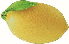 Epinki Flanell Teppiche Lemon Muster Teppiche für