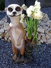 Erdmännchen Dekofigur Gartendeko Statue 60 cm hoch mit Pflanztopf Gartenfigur XL Gartenfiguren Erdmännchen groß mit Blumentopf - liebevoll detailliert gestaltet und handbemalt - wetter- und frostfes