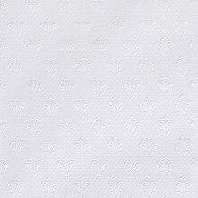 ERFURT Anaglypta RD 0669 Albert 10 x 0,53 m