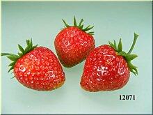 ERRO Erdbeeren (3 Stück) - Lebensmittelattrappe