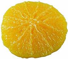 ERRO Orangenscheibe - Lebensmittelnachbildung,