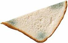 ERRO Toast schimmelig als Haftmagnet -